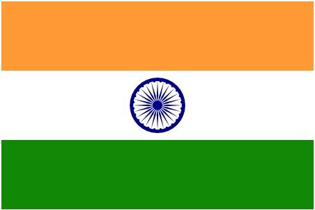 Rajasthan Flag